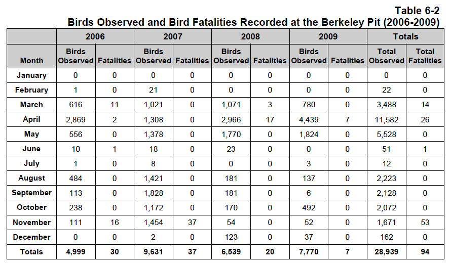 This chart, from the 2011 EPA Five Year Review Report on the site, shows Berkeley Pit-related bird deaths from 2006-2009.